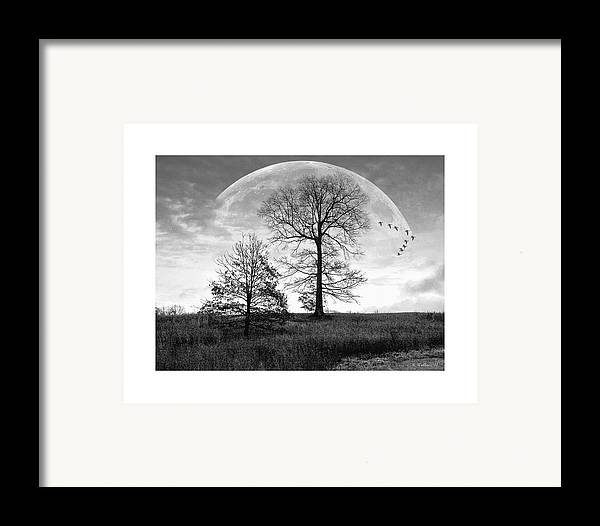 2d Framed Print featuring the photograph Moonlit Silhouette by Brian Wallace