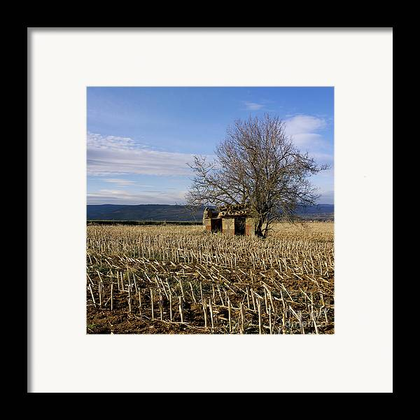 Zea Framed Print featuring the photograph Old Hut Isolated In A Field. Auvergne. France by Bernard Jaubert