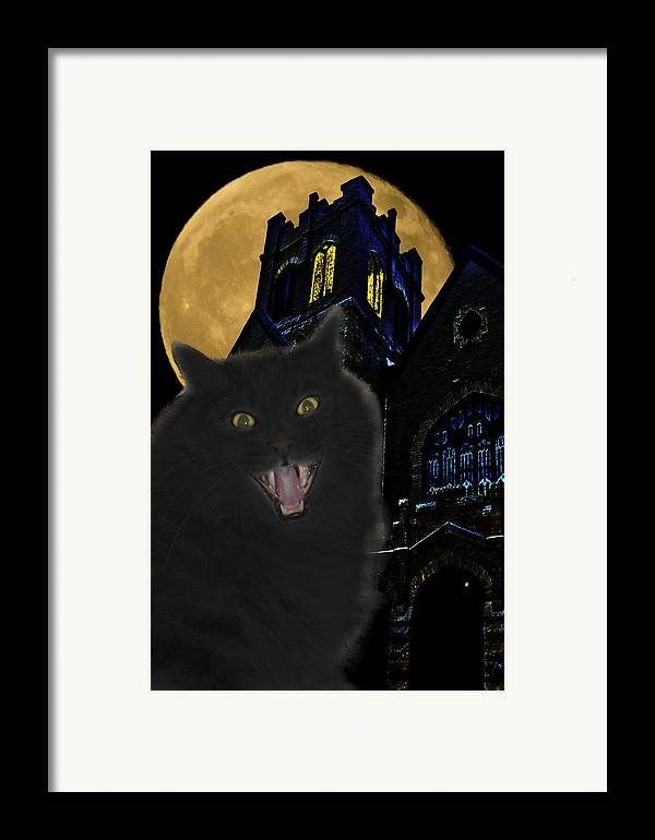 Black Cat Framed Print featuring the photograph One Dark Halloween Night by Shane Bechler