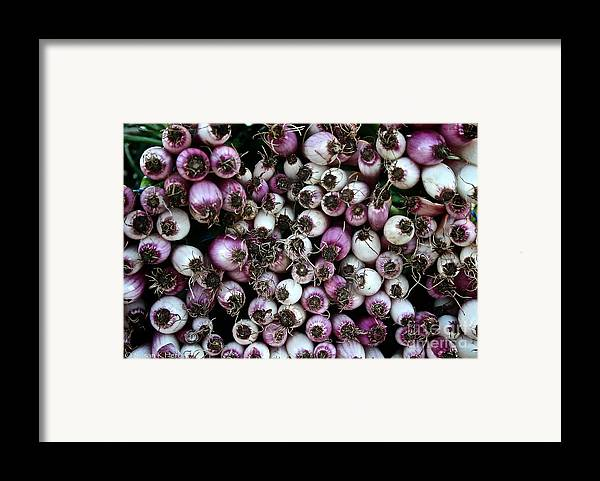 Food Framed Print featuring the photograph Onion Power by Susan Herber