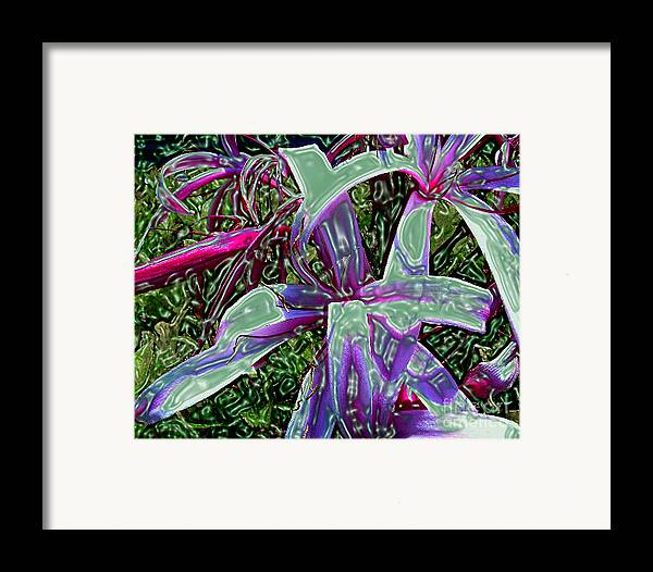 Flower Framed Print featuring the photograph Plasticized Cape Lily Digital Art by Merton Allen