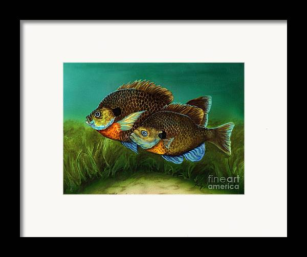 Bluegills Framed Print featuring the painting Pretty Little Panfish by Kathleen Kelly Thompson