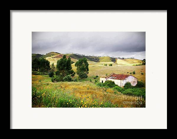 Calm Framed Print featuring the photograph Ruin In Countryside by Carlos Caetano