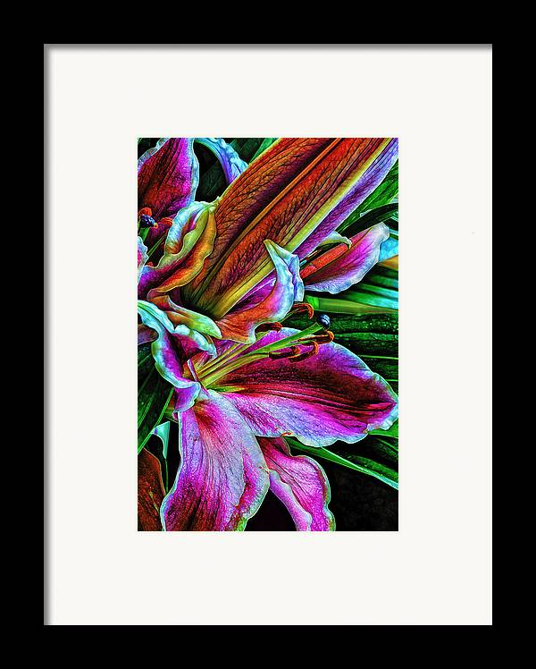 Flowers Framed Print featuring the photograph Stargazer Lilies Up Close And Personal by Bill Tiepelman