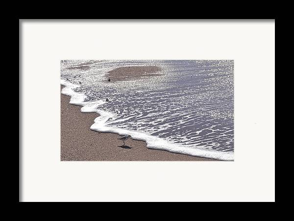 Summer Framed Print featuring the photograph Summer Shimmer by Cindy Lee Longhini
