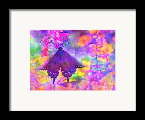 Swallowtail Framed Print featuring the photograph Swallowtail by Judi Bagwell