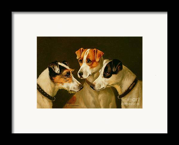 Dog Framed Print featuring the painting The Hounds by Alfred Wheeler