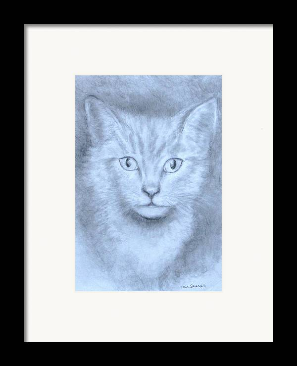 Pencil Drawing Framed Print featuring the drawing The Kitten by Jack Skinner