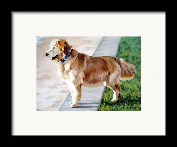 Dog Framed Print featuring the painting The Patient Golden by Sandra Chase