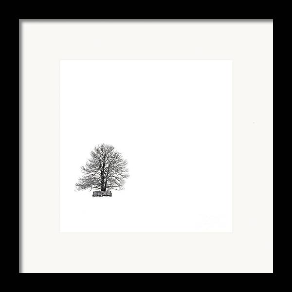 Landscape Framed Print featuring the photograph Tree Isolated Under The Snow In The Middle Field In Winter. by Bernard Jaubert