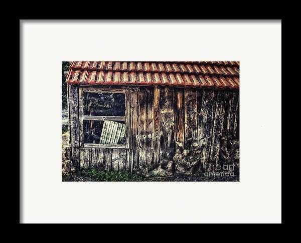 Photo Framed Print featuring the photograph Wayside by Jutta Maria Pusl