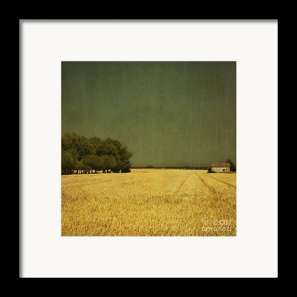 White Framed Print featuring the photograph White Barn by Paul Grand