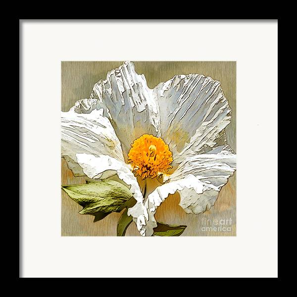 White Flower Framed Print featuring the drawing White Paper Flower by Artist and Photographer Laura Wrede