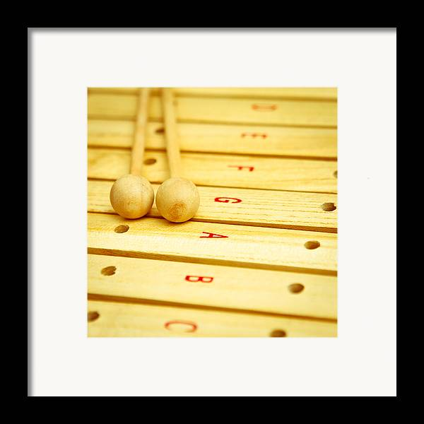 Beaters Framed Print featuring the photograph Xylophone by Tom Gowanlock