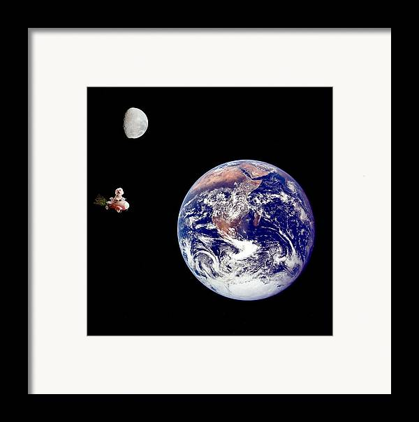 Animal Framed Prints Framed Print featuring the photograph Fifi Goes To The Moon by Michael Ledray