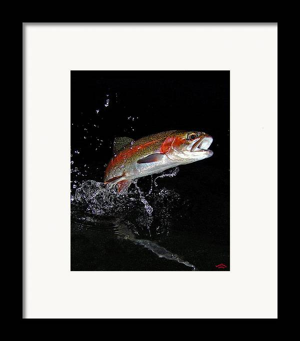 Rainbow Trout Framed Print featuring the photograph 3d Rainbow by Brian Pelkey