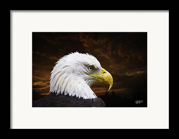 Eagle Framed Print featuring the photograph Bald Eagle - Freedom And Hope - Artist Cris Hayes by Cris Hayes