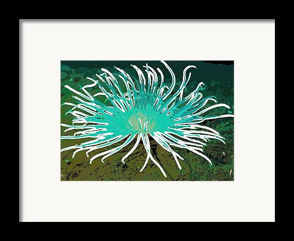 Starfish Framed Print featuring the painting Beautiful Sea Anemone 2 by Lanjee Chee