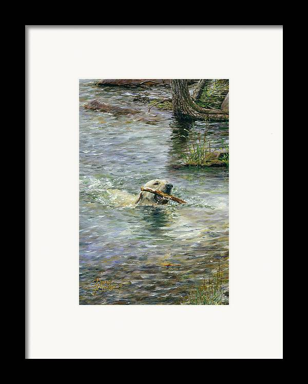 Yellow Lab Framed Print featuring the painting Fetch by Doug Kreuger