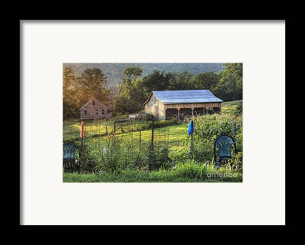 Garden Framed Print featuring the photograph Garden View by Pete Hellmann
