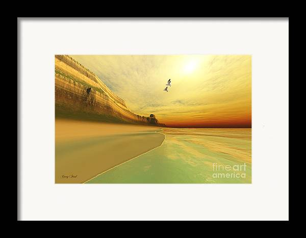 Seagull Framed Print featuring the painting Gold Coast by Corey Ford