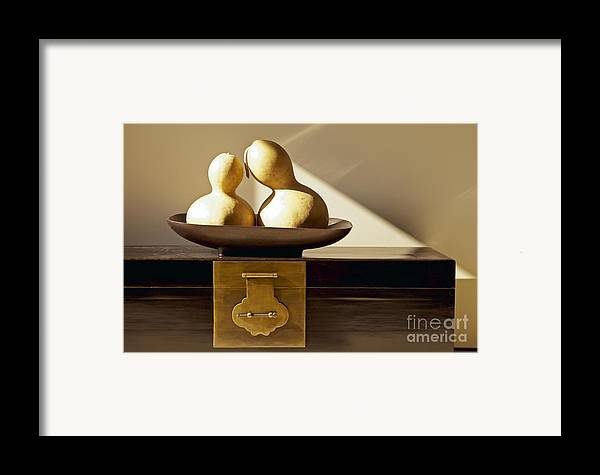 Art Framed Print featuring the photograph Gourds Still Life II by Kyle Rothenborg - Printscapes