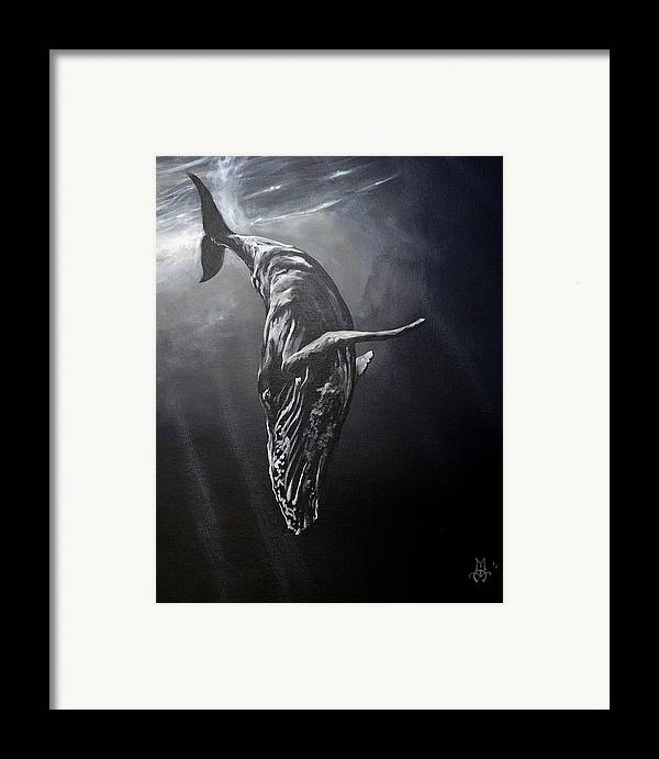 Whale Framed Print featuring the painting Graceful Descent by Marco Antonio Aguilar