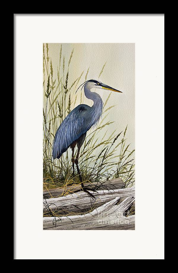 Great Blue Heron Framed Print featuring the painting Great Blue Heron Splendor by James Williamson