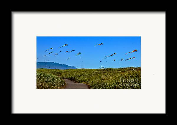 Haybales Framed Print featuring the photograph Kites by Robert Bales
