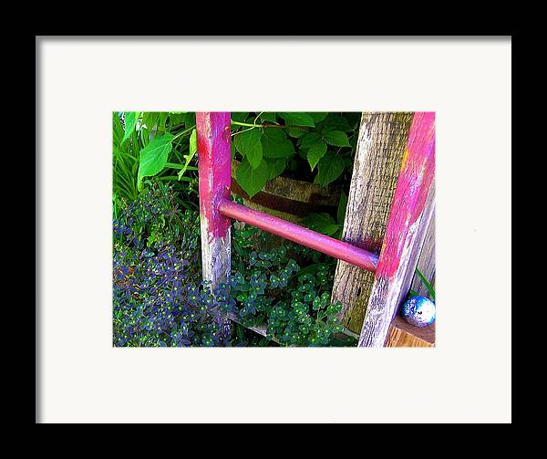 Garden Ladder Framed Print featuring the photograph Laura's Ladder by Jen White