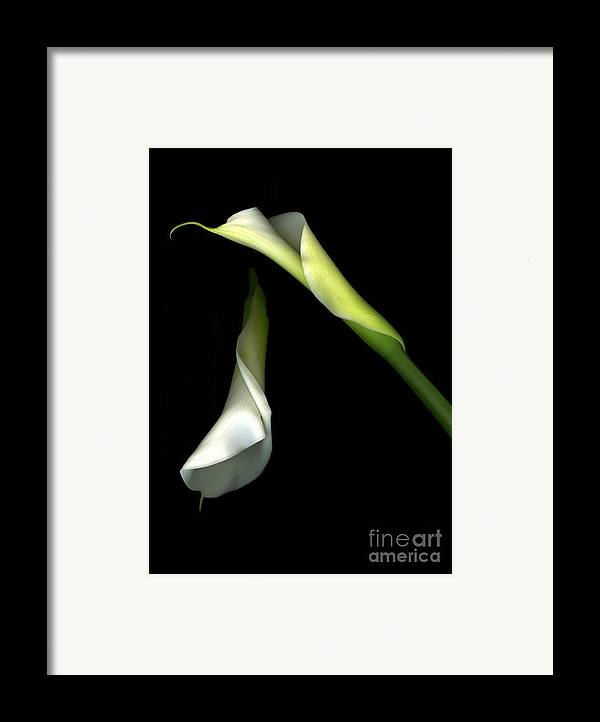 Scanart Framed Print featuring the photograph Let There Be Light by Christian Slanec