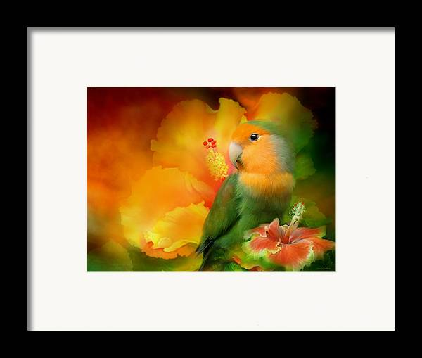 Lovebird Framed Print featuring the mixed media Love Among The Hibiscus by Carol Cavalaris