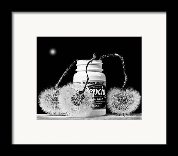 Orsillo Framed Print featuring the photograph Maxamum Strength by Bob Orsillo
