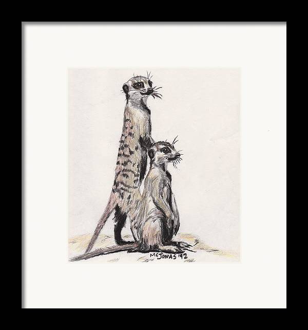 Wildlife Framed Print featuring the drawing Meerkats by Marqueta Graham