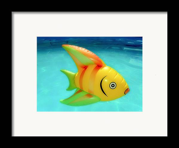 Fish Framed Print featuring the photograph Pool Toy by Tony Grider