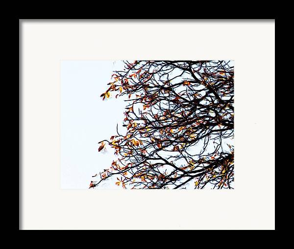 Praha Framed Print featuring the painting Praha Tangled Tree by Shawn Wallwork
