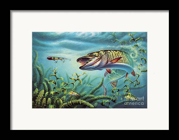 Muskie Framed Print featuring the painting Provoked Musky by Jon Q Wright