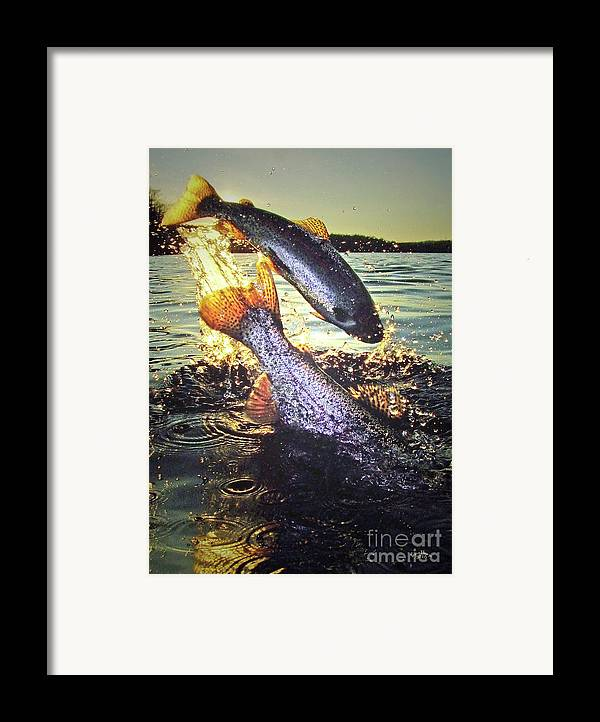 Bestrainbowtroutphotos.ifp3.com Framed Print featuring the photograph Rare Solar Eclipse by Brian Pelkey