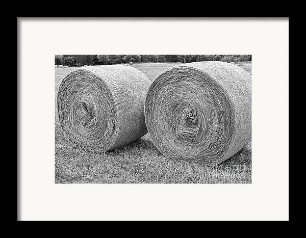 Hay Framed Print featuring the photograph Round Hay Bales Black And White by James BO Insogna