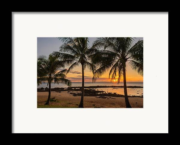 Sharks Cove Palm Tree Sunset Beach North Shore Oahu Hawaii Hi Seascape Framed Print featuring the photograph Sharks Cove Sunset 4 - Oahu Hawaii by Brian Harig