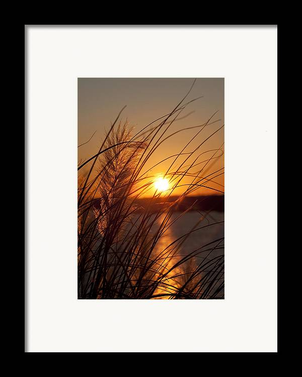 Sunset Framed Print featuring the photograph Sunset Over Lake Wylie Sc by Dustin K Ryan