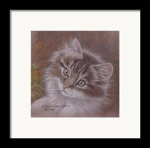 Framed Print featuring the painting Tabby Kitten by Dorothy Coatsworth