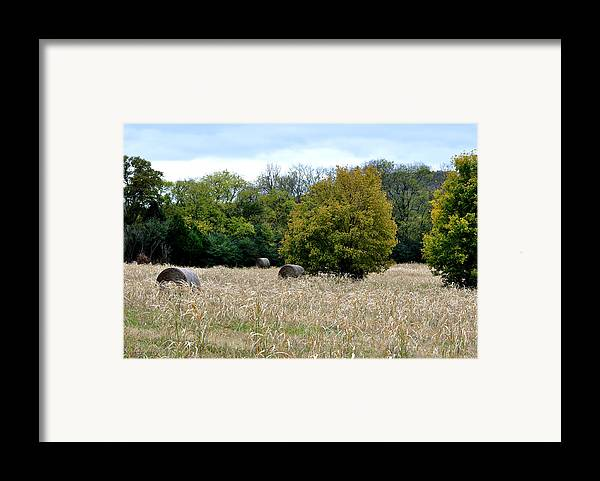 Landscapes Framed Print featuring the photograph The Sun Is Still Shining by Jan Amiss Photography