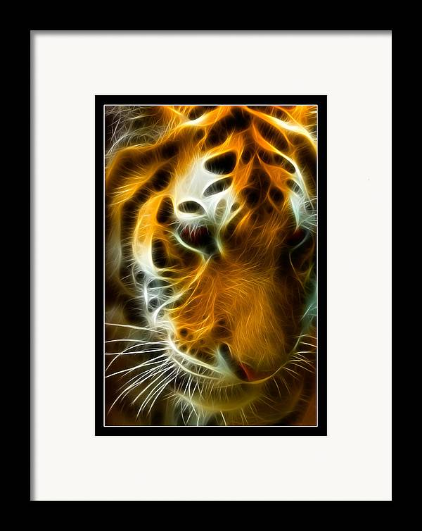 Bengal Framed Print featuring the photograph Turbulent Tiger by Ricky Barnard