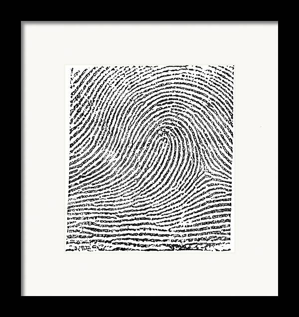 Science Framed Print featuring the photograph Typical Loop Pattern, 1900 by Science Source