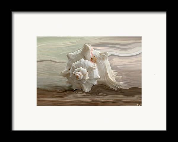 Seashell Framed Print featuring the photograph White Shell by Linda Sannuti