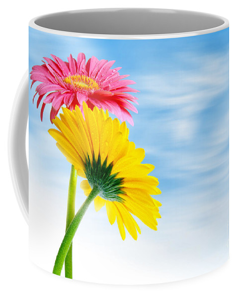 Background Coffee Mug featuring the photograph Two Gerberas by Carlos Caetano