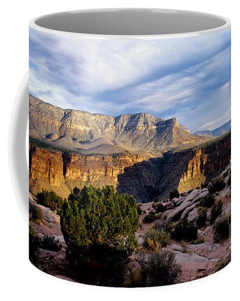 Toroweap Coffee Mug featuring the photograph Canyon Walls At Toroweap by Kathy McClure