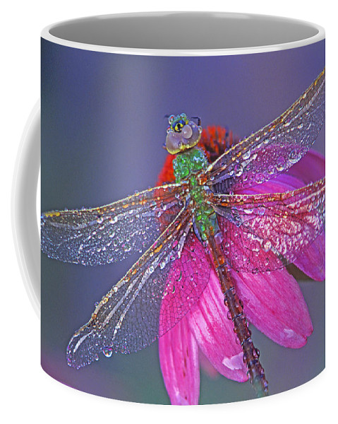 Dew Covered Dragonfly Rests On Purple Cone Flower Coffee Mug featuring the photograph Dreaming Dragon by Bill Morgenstern