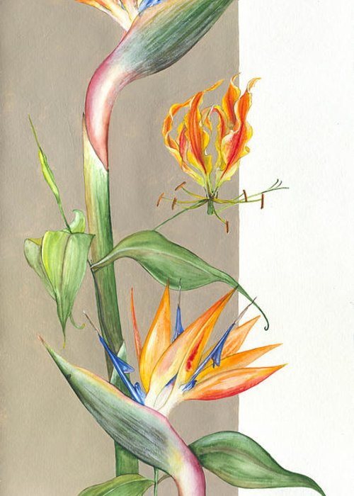Strelitzia Greeting Card featuring the painting Bird Of Paradise 09 Elena Yakubovich by Elena Yakubovich